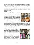 Atestat Potentialul turistic al Maramuresului - imaginea13