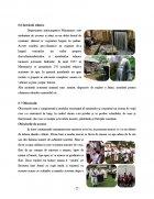 Atestat Potentialul turistic al Maramuresului - imaginea20